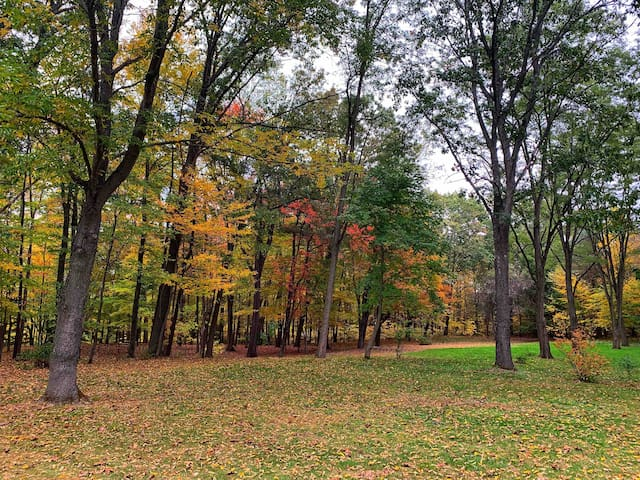 Autumn around the property affords a spectacular beauty.