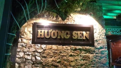 huong sen family