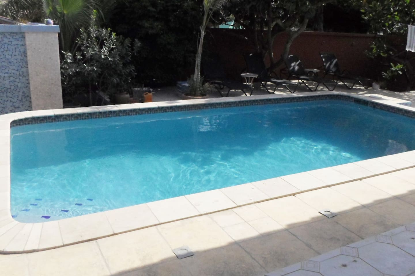 Pool in the garden with 8 loungers