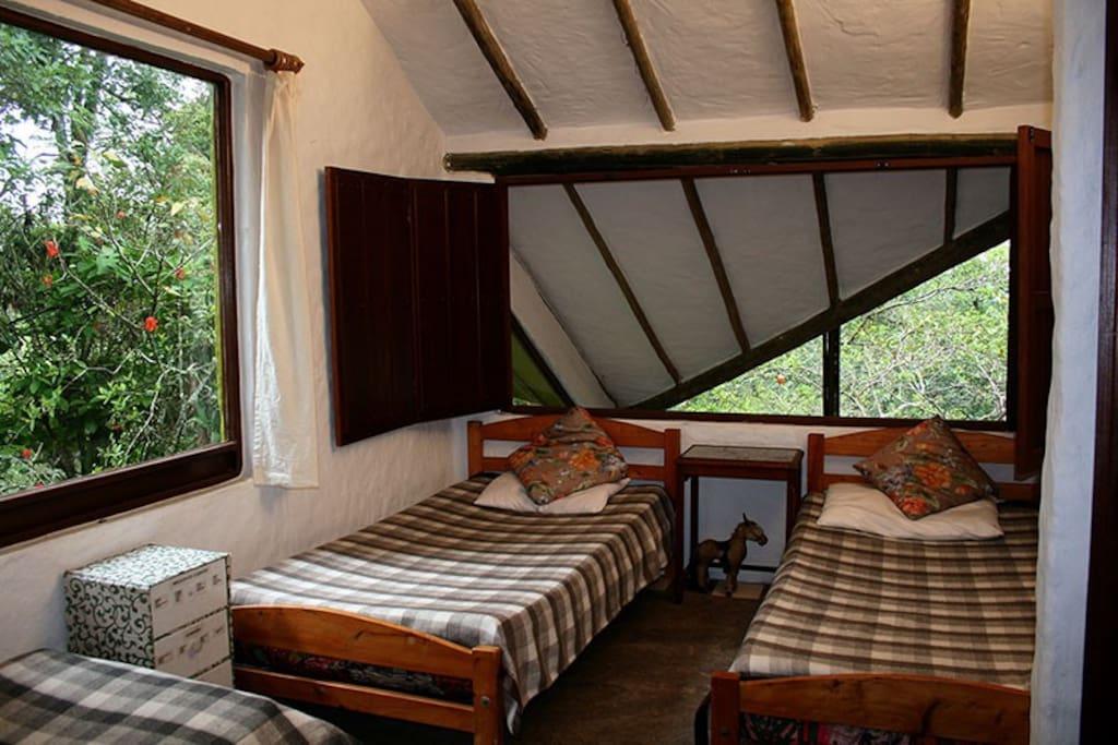 Alcoba tres camas sencillas vista al bosque