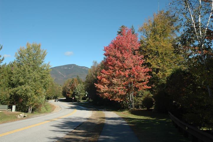 WV fall foliage