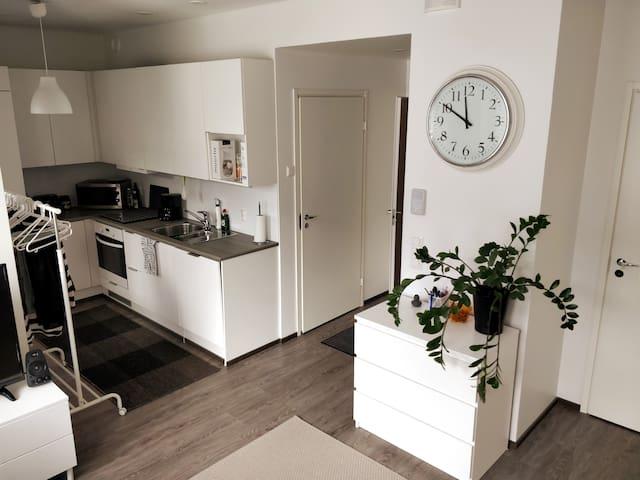 Clean and modern 34 m² studio