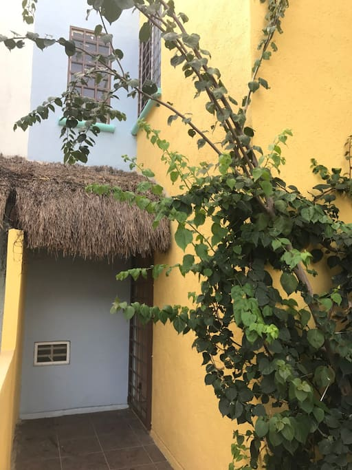 A Mayan palapa-covered tropical entrance gardened with bougainvilleas and bamboos