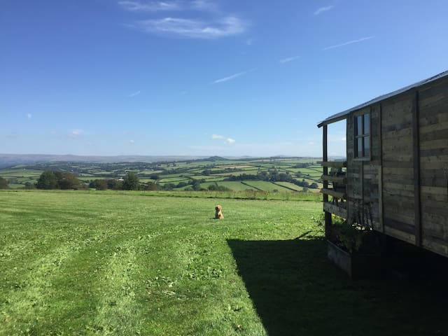 The Secret Stable Shepherd's Hut