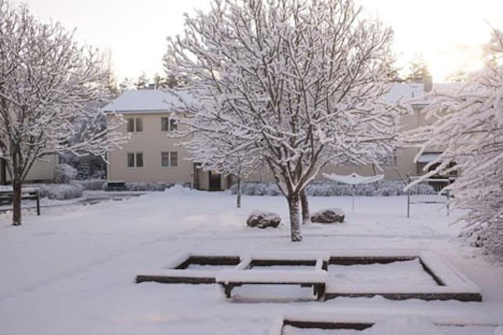 Bygning vinter