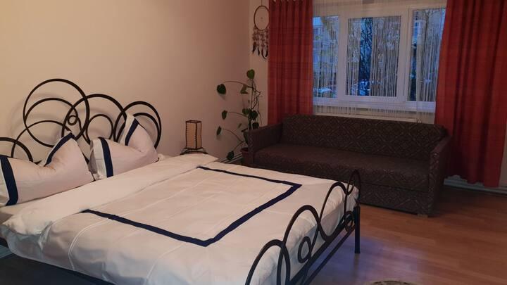 Mihaela's apartament