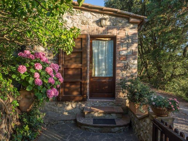 poggio alla rocca - ALBA - Civitella Paganico - Apartment
