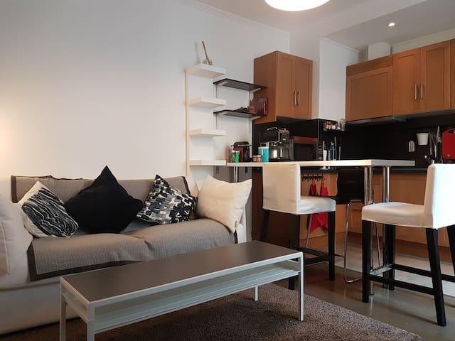 Cosy flat 5 min from Champs Elysées, Rue de Levis