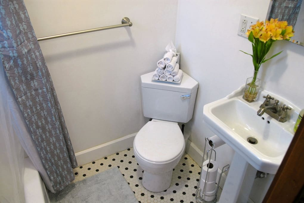 """Clean. Comfortable. Bathroom was modern with unique toiletries. Great family. Location was ideal. We walked to Star Market and Porter Square bookstore every day. My first AirBnb experience was outstanding!!""  --Anita"