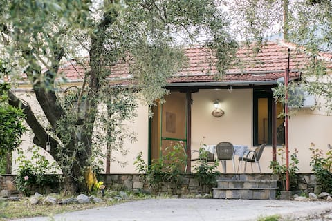 Cosy and quiet house at Platanidia