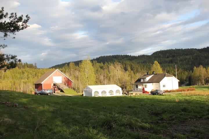 Rønningen gård - Skien - Byt