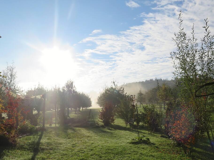 Garten, u.a. mit Feuerstelle zum mitbenutzen und mitnaschen