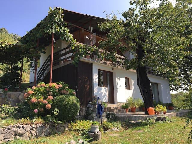 Casa en El Centro de los Balcanes