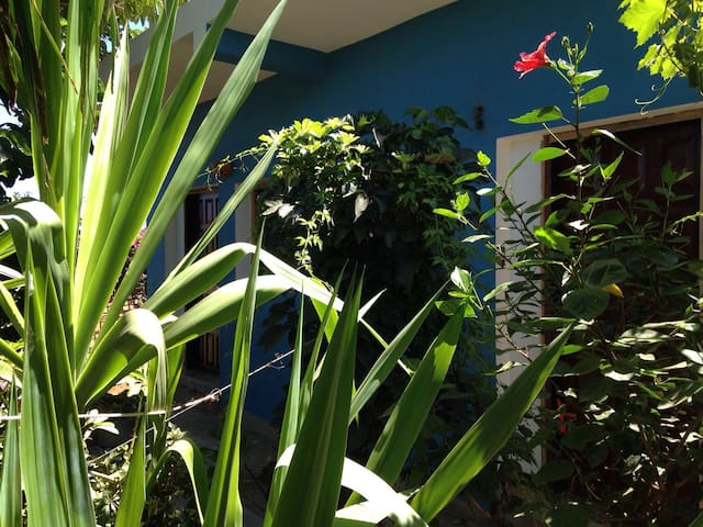 Il Giardino di Abdeslam - Oued Laou - Ev