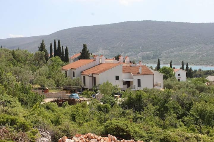 One bedroom apartment with terrace and sea view Cres (A-7876-b) - Cres - Apartament