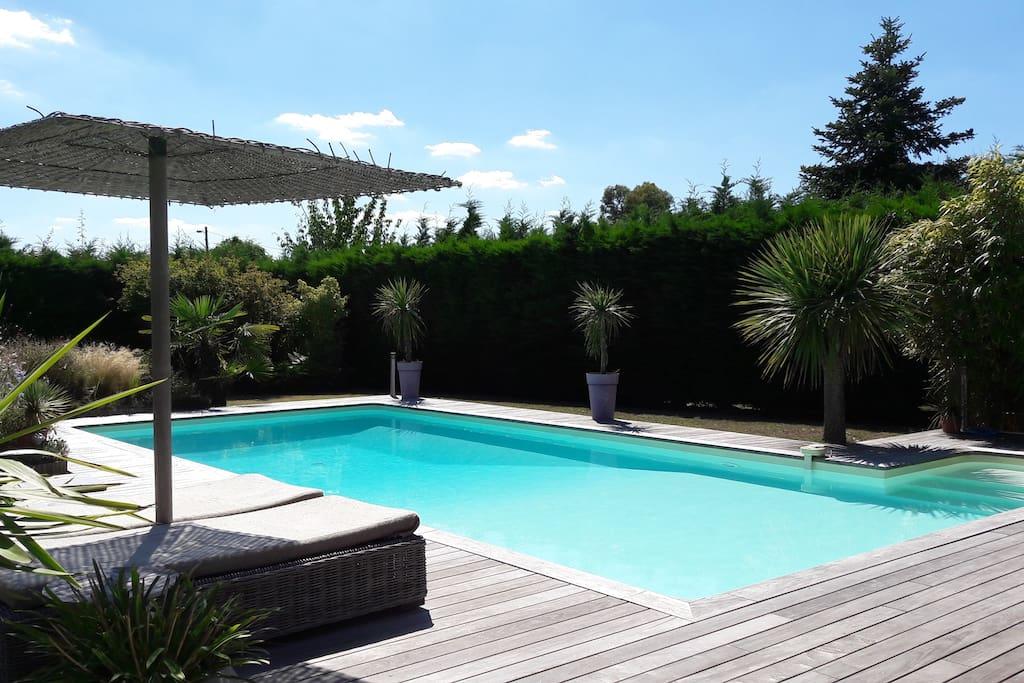 Grande piscine avec terrasse en ipé
