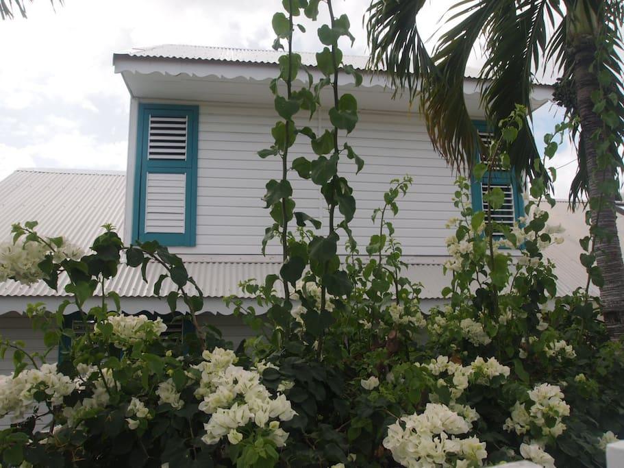 villa les florots villas for rent in gp guadeloupe. Black Bedroom Furniture Sets. Home Design Ideas