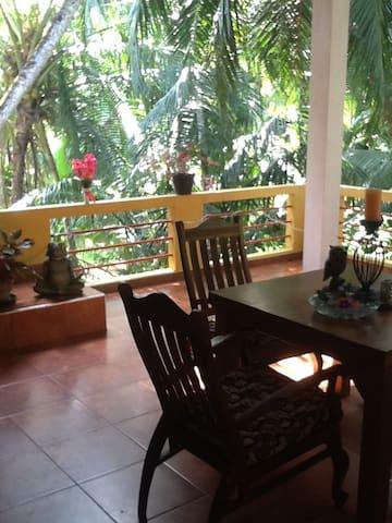 Wohnen unter Palmen - Beruwala - Wohnung