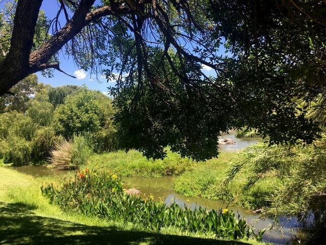 On the banks of the Vaal