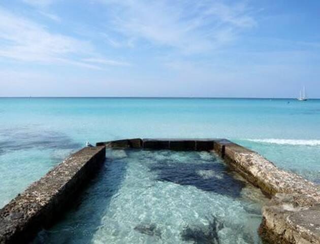 Suite  con terraza y vistas a la isla de Cabrera