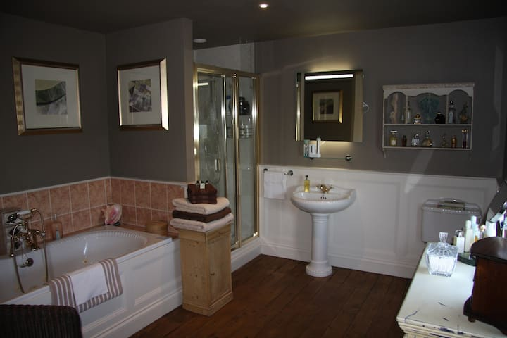 Bathroom with jacuzzi tub and great shower