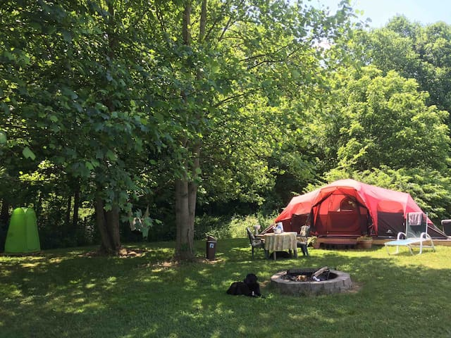 Woodland Gatherings Sunrise Glamping - Cataract