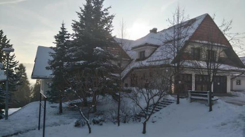 Apartament Niedzica.