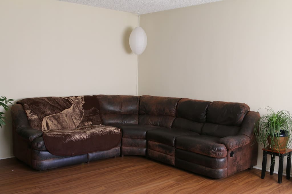 Large Living Room Couch