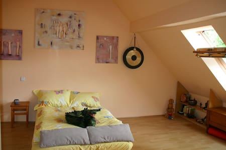 Großes geräumiges Zimmer mit eigenem Badezimmer. - Wohnung