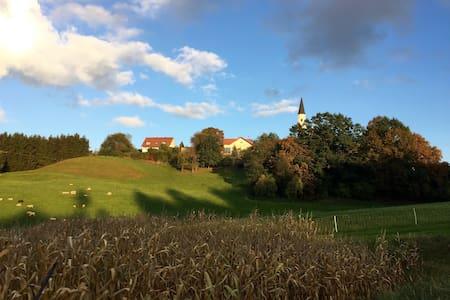 Euer Traumhaus Frauenberg zur LANDSHUTER HOCHZEIT - Landshut - Dům