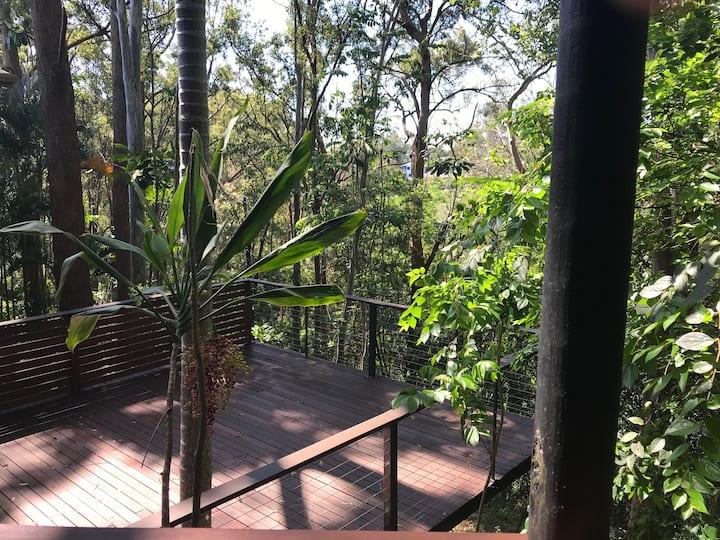 Tranquil Rainforest Getaway