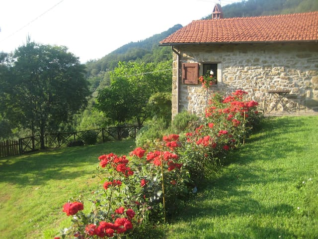 Idyllic cosy cottage+ pool close to Florence - Londa - Cabaña en la naturaleza