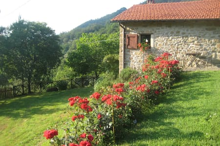 Idyllic cosy cottage+ pool close to Florence - Londa