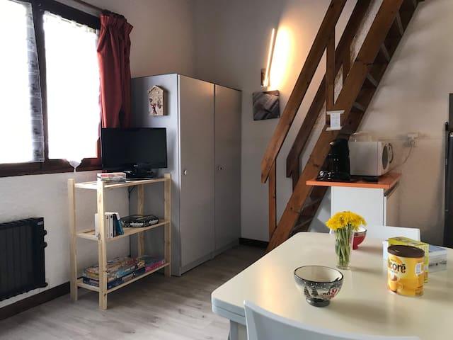 Superbe studio à Pra-Loup 1500