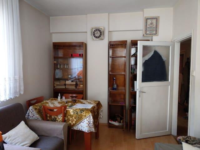 Istanbul apartment rental daily rental