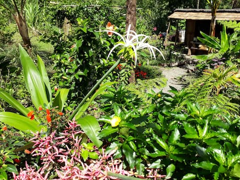 Agouti Cottage, Roots Cabin-Organic Gardens-Rivers