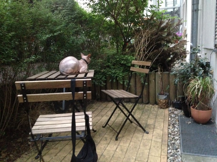 Patio with entrance from the kitchen That's our cat, Krang