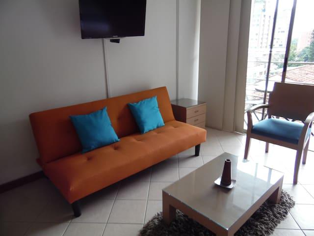 Sala y Tv plasma. Living room and Tv plasma