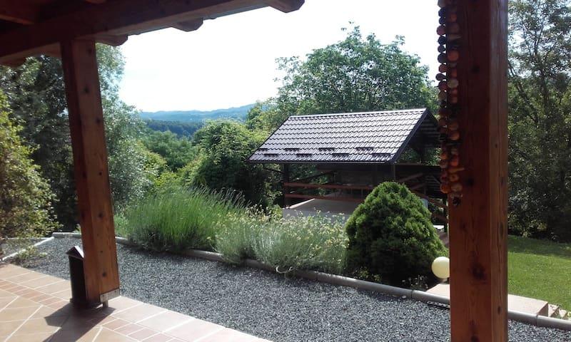Pogled sa terase na sjenicu