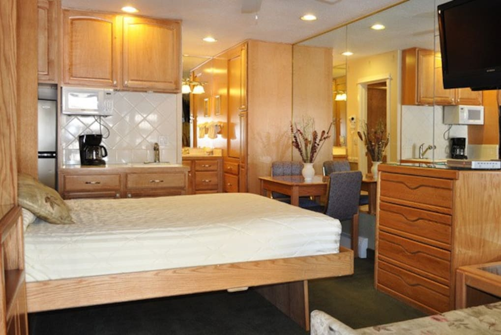Studio with Murphy Bed down