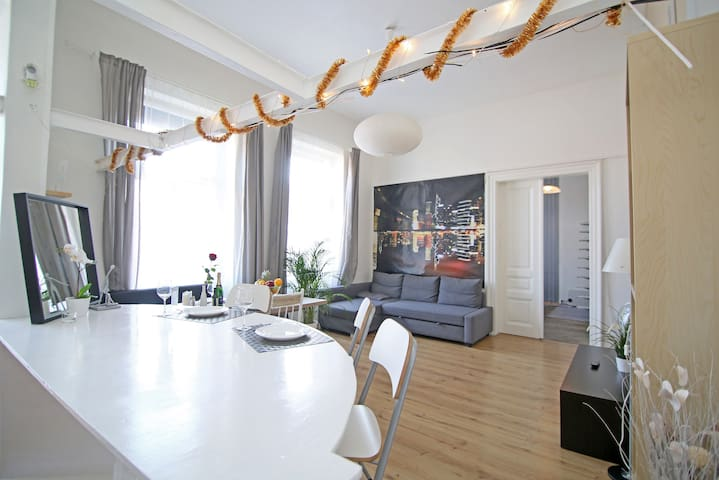 Beautiful apt in the Heart of City-up to 6 persons
