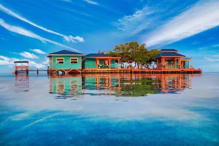 Bird Island : a unique private Island in Belize.