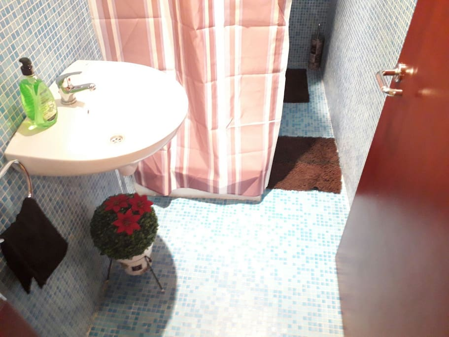 Bathroom with shower, Wc and sink
