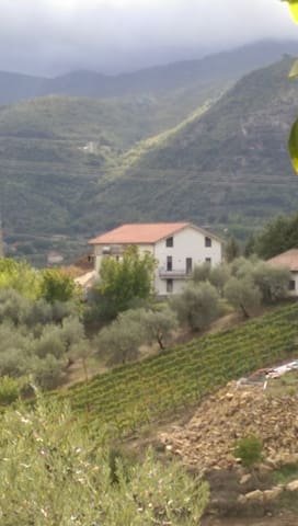 VILLA BUCOLICA NEL CILENTO TRA MARE E COLLINE - Roccadaspide - Townhouse