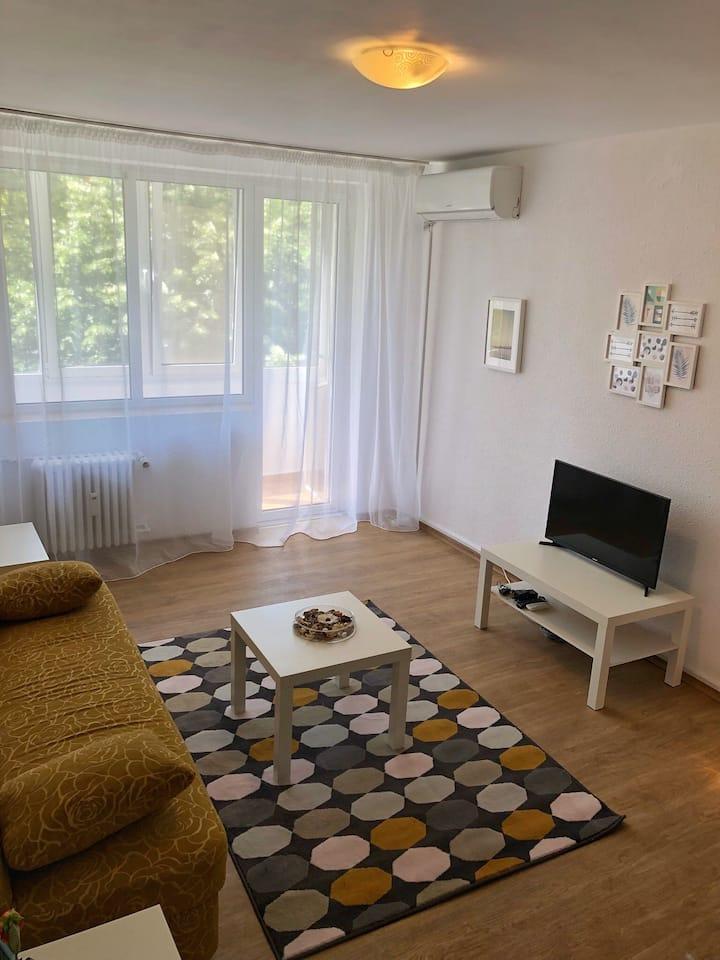 Dorobanti Apartment