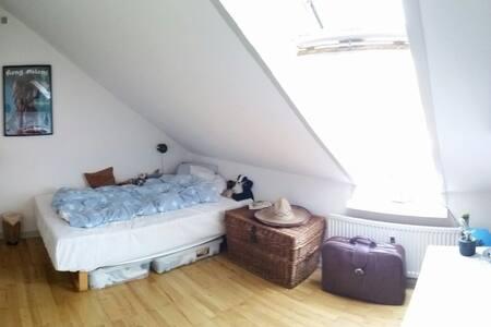 Room near the botanical garden. - Aarhus