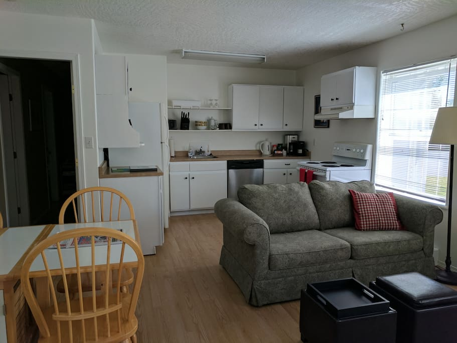 Living and kitchen area. The couch converts to a double bed.