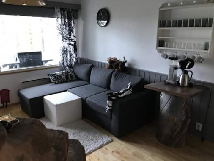 Aurora Borealis-Atmospheric holiday apartment