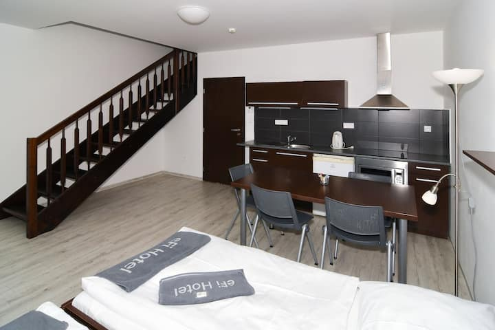 eFi Apartment Duplex with kitchenette and terrace