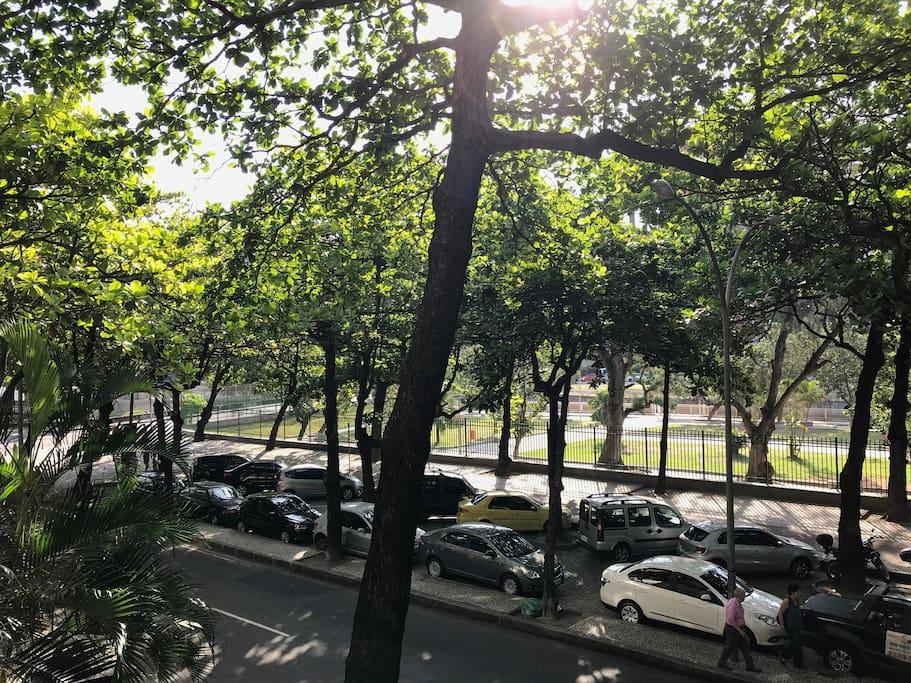 Essa é a nossa rua, super tranquila e arborizada